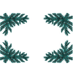 Four blue realistic fir branches placed in the vector
