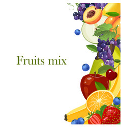 fruits border isolated on white background vector image