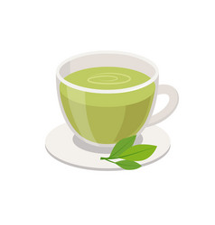 green tea in cup and green leaves vector image