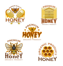Honey icon with bee honeycomb beehive and dipper vector