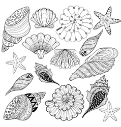 Set Shells zentangle seashells for adult vector