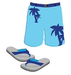Shorts and slippers vector image
