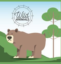 wild animals design vector image