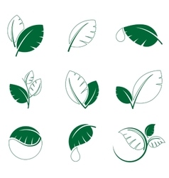 Green leaf leaves symbol icon set vector image vector image