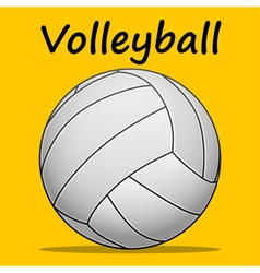 Volleyball-team sport vector image vector image