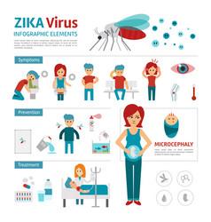zika virus infographic elements flat vector image
