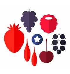 Berry Set vector image
