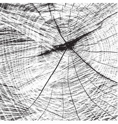 Sawed trunk texture vector