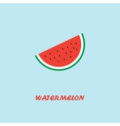 Watermelon Pocter vector image