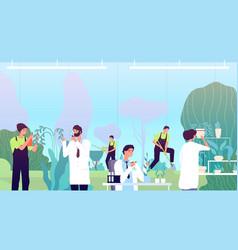 Work in greenhouse herbs scientist people vector