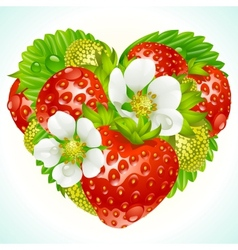 strawberries in the shape of heart vector image vector image