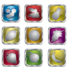 fruit icon pack vector image