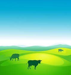 Cow grazes in a meadow - vector