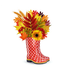 Fashion red dotted rubber boots vector