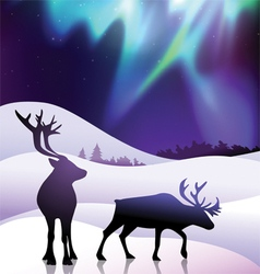 The aurora with a deers in foreground vector