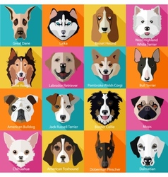 Set of flat dogs icons vector