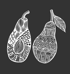 avocado on white background vector image