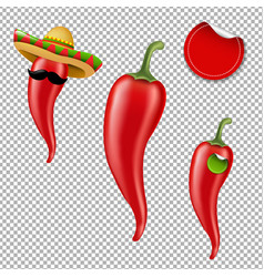 hot chilli pepper big set vector image