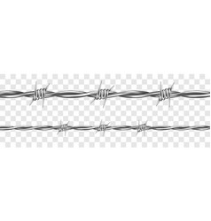 metal steel barbed wire with thorns or spikes vector image