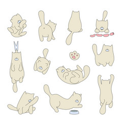 set isolated cute cats and kittens in vector image