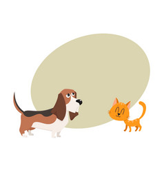 Basset hound dog and red cat kitten characters vector