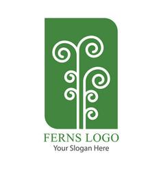 leaf a green fern logo vector image