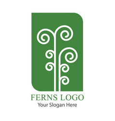 Leaf of a green fern logo vector