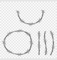 metal steel barbed wire part with thorns or spikes vector image