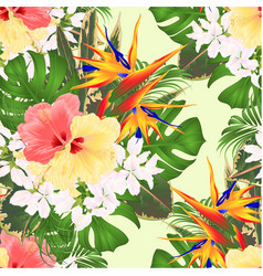 seamless texture tropical flowers strelitzia and vector image
