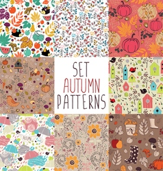 Set of autumn pattern vector image