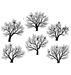silhouettes of birds nest in trees without leaves vector image