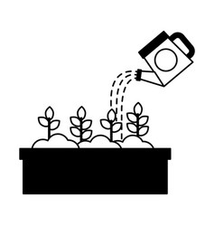Watering can pouring water flowers in pot vector