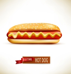 bun with sausage hot dog isolated on a white backg vector image vector image