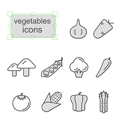 Thin line icons set Vegetables vector image