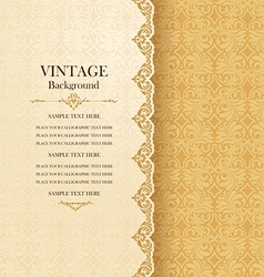 Vintage ornamental greeting card with lace vector image vector image