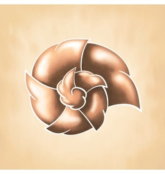 Abstract chocolate cochlea vector