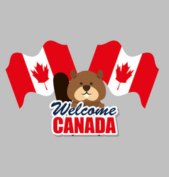 Beaver canadian animal scene vector