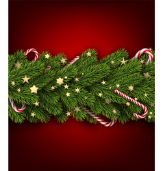 christmas background with fir branch and stars vector image