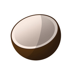 Coconut fruit icon vector