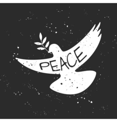 grungy Peace dove with olive branch vector image