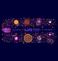 star life cycle vector image