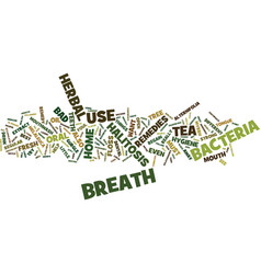 The different bad breath herbal remedy text vector