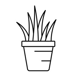 aloe pot icon outline style vector image