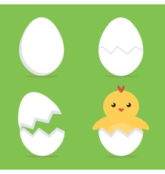 Baby chick hatching from the egg process vector