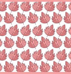 background autumn leaves botanical season design vector image
