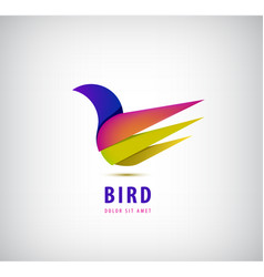 Bird 3d abstract colorful brand animal logo vector