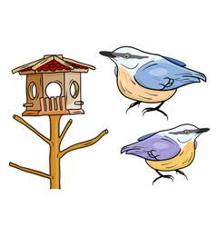 cartoon birds with bird box vector image