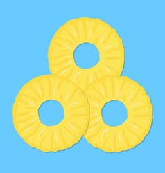 cut rings of fresh ripe juicy pineapple vector image