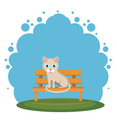 Cute cats in the park scene vector