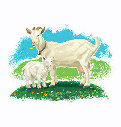 goat with kid vector image
